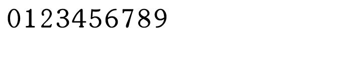 Shree Bangali 1565 Regular Font OTHER CHARS