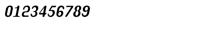 Shree Bangali 1599 Italic Font OTHER CHARS