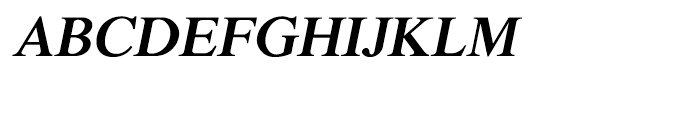 Shree Devanagari 0701 Bold Italic Font UPPERCASE