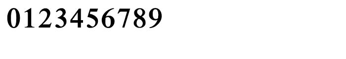 Shree Devanagari 0706 Bold Font OTHER CHARS