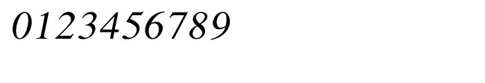 Shree Devanagari 0706 Italic Font OTHER CHARS