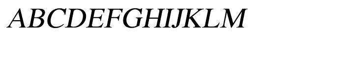 Shree Devanagari 0706 Italic Font UPPERCASE