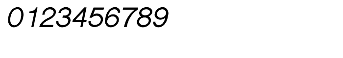 Shree Devanagari 0725 Italic Font OTHER CHARS