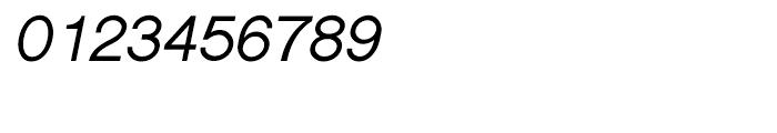 Shree Devanagari 1208 Bold Italic Font OTHER CHARS