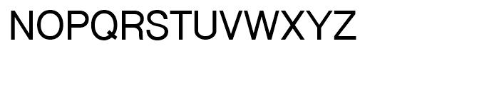 Shree Devanagari 1249 Bold Font UPPERCASE