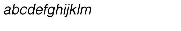 Shree Gujarati 5209 Italic Font LOWERCASE