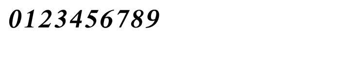 Shree Kannada 4232 Italic Font OTHER CHARS