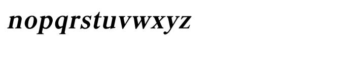 Shree Kannada 4232 Italic Font LOWERCASE