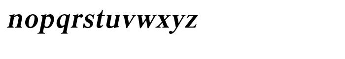 Shree Malayalam 1892 Italic Font LOWERCASE