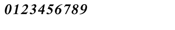Shree Malayalam 3208 Italic Font OTHER CHARS