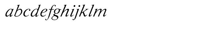 Shree Oriya 0628 Italic Font LOWERCASE