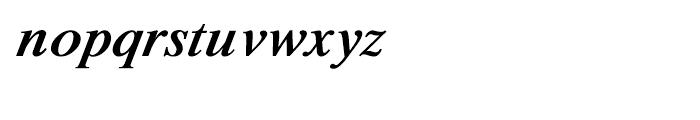 Shree Oriya 0630 Italic Font LOWERCASE