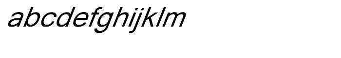 Shree Oriya 0636 Bold Italic Font LOWERCASE