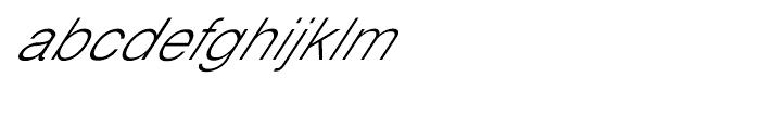 Shree Oriya 3019 Italic Font LOWERCASE