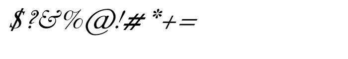 Shree Punjabi 1750 Italic Font OTHER CHARS