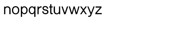 Shree Punjabi 1766 Regular Font LOWERCASE