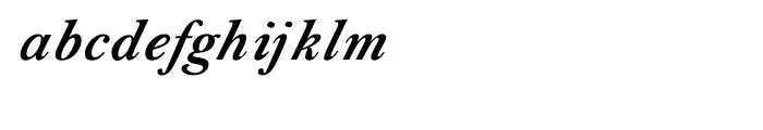 Shree Tamil 1383 Bold Italic Font LOWERCASE