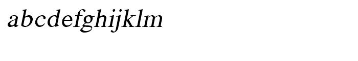 Shree Telugu 1601 Italic Font LOWERCASE