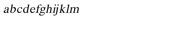 Shree Telugu 1692 Italic Font LOWERCASE