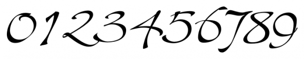 Shapely Regular Font OTHER CHARS