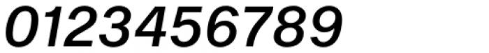 Shapiro Pro 454 Italic Font OTHER CHARS