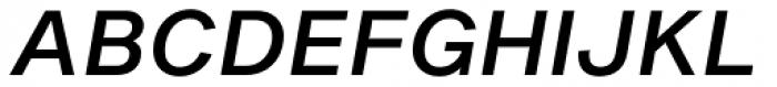 Shapiro Pro 454 Italic Font UPPERCASE