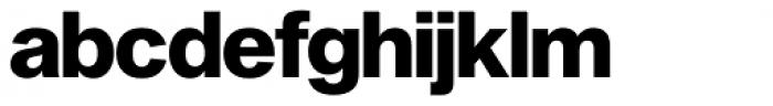 Shapiro Pro 487 American Flag Font LOWERCASE