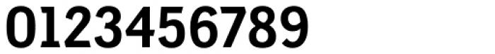 Shapiro Pro 563 Bold Ruler Font OTHER CHARS