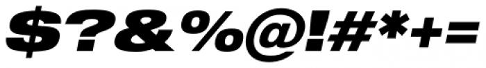 Shapiro Pro 89 Italic Font OTHER CHARS