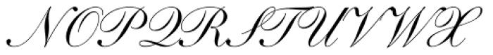Shelley Script Pro Font UPPERCASE