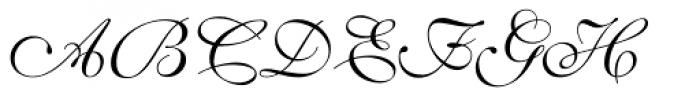 Shelley Volante Script Font UPPERCASE