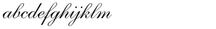 Shelley Volante Script Font LOWERCASE