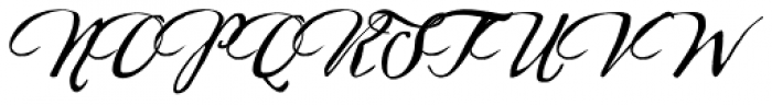 Sherlock Script 2 Font UPPERCASE