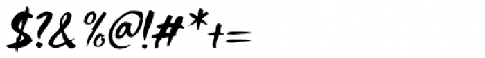 Shinano Italic Font OTHER CHARS