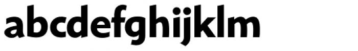 Shinn RR Bold Font LOWERCASE