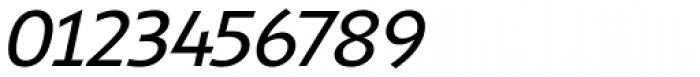 Shinn RR Book Italic Font OTHER CHARS