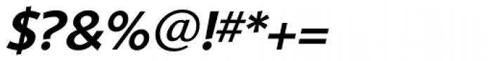 Shinn RR Medium Italic Font OTHER CHARS