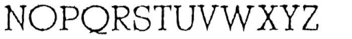 Shrub Font UPPERCASE