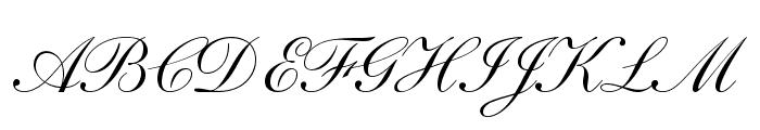 ShelleyLTStd-Script Font UPPERCASE