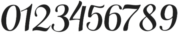 Siberius otf (400) Font OTHER CHARS