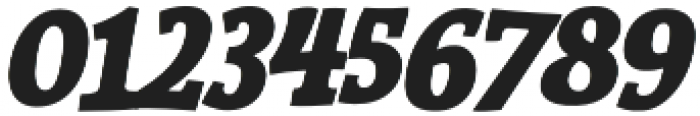 Siggy Bold Italic otf (700) Font OTHER CHARS