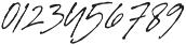 Signature Flavour Slant ALT  otf (400) Font OTHER CHARS