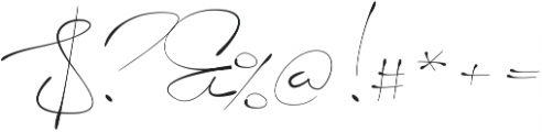 Signerica Thin ttf (100) Font OTHER CHARS
