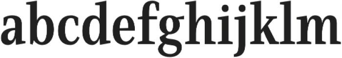 Singel otf (700) Font LOWERCASE