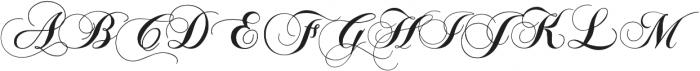 sintiya Script sintiya Script otf (400) Font LOWERCASE