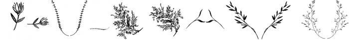 Silex. Modern calligraphy 2 Font LOWERCASE