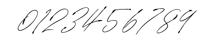 SignatureVP Font OTHER CHARS