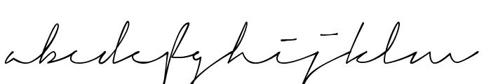 Signerica Medium Font LOWERCASE