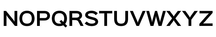 Sinkin Sans 600 SemiBold Font UPPERCASE