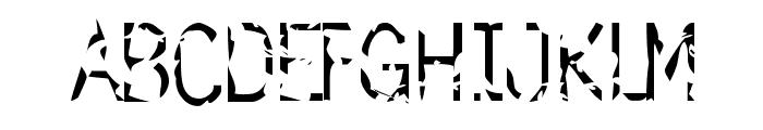 simulation Font UPPERCASE